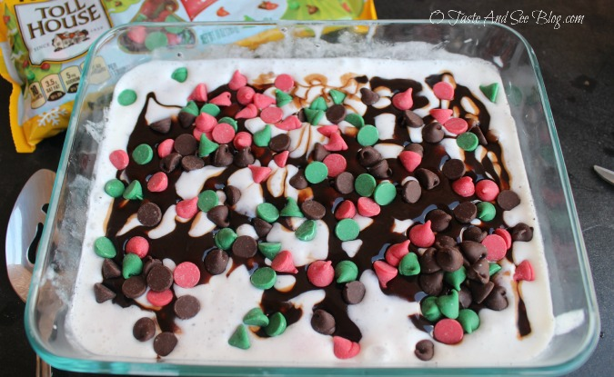 Peppermint Ice Cream Dessert