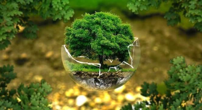 lunesco_sassocie_aux_assureurs_pour_proteger_le_patrimoine_mondial_