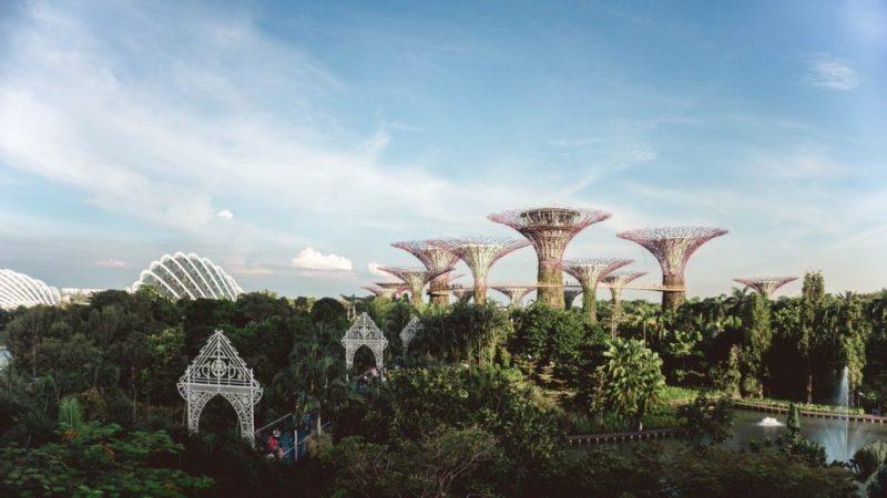 singapour biomimetisme 1024x576 1
