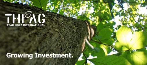 THI-AG_Teak_sustainable_growing_investment_en
