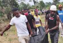 Photo of A/R: Farmer, 35, shoots colleague dead over palm wine