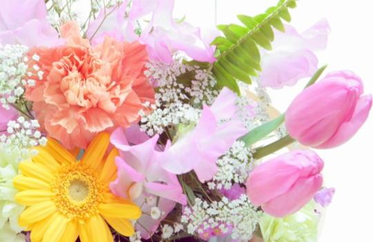 母の日にプレゼントする花の種類