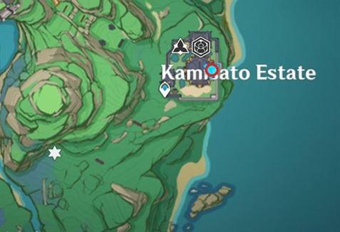 22 Electroculus под обрывом возле карты поместья Камисато