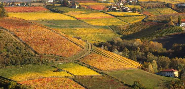 Best Fall & Winter Events in Italy
