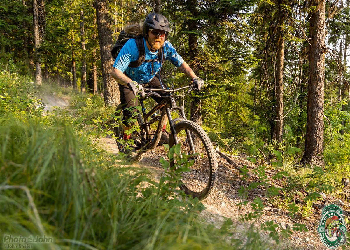 A mountain biker in a bright blue jersey, riding aggressively on a leafy, green singletrack trail.