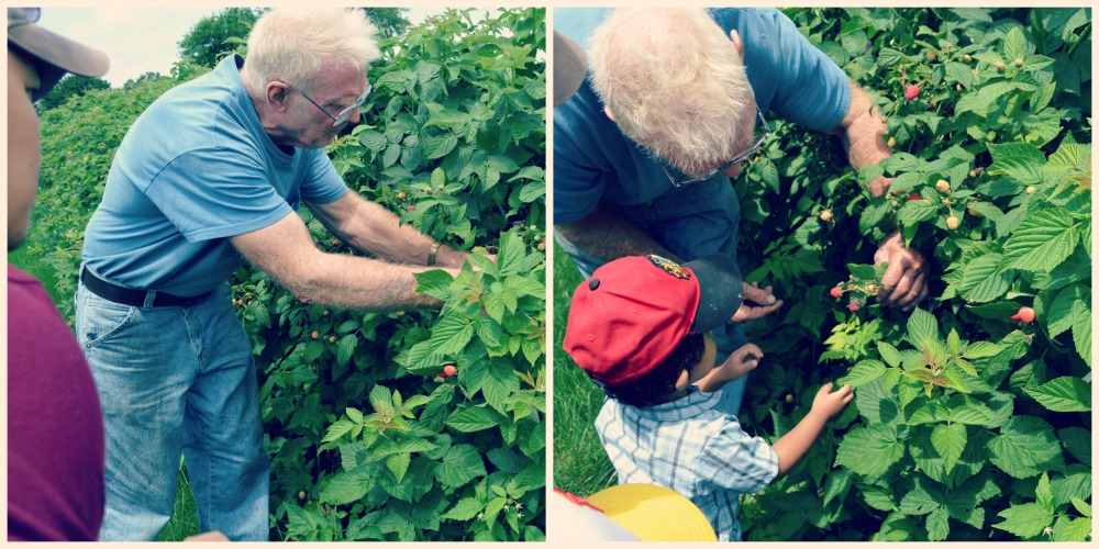 Heiders Berry Farm John Heider Showing us the Ropes