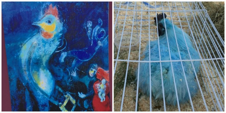 Kohl Childrens Museum Chagall Chicken