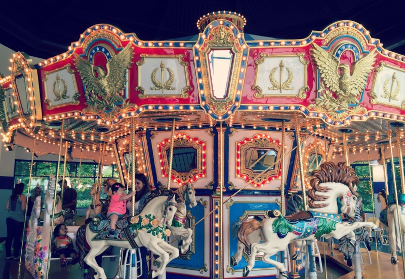 Jumps n Jiggles Elk Grove Village Carousel Whole View
