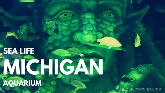Family Fun Review: SEA LIFE Michigan Aquarium Detroit