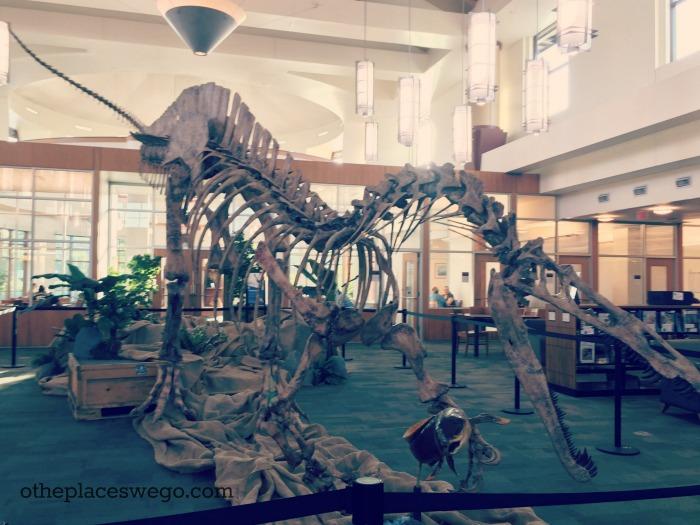 Gail Borden Public Library - Dinosaur Suchimimus
