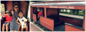 Milwaukee County Zoo - Train