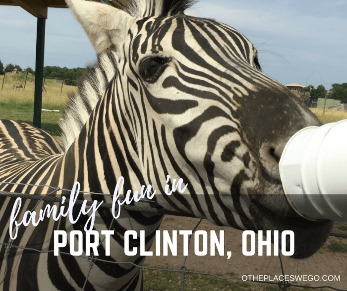 Family fun in Port Clinton, Ohio including the African Safari Wildlife Park, the only Midwest drive thru park.