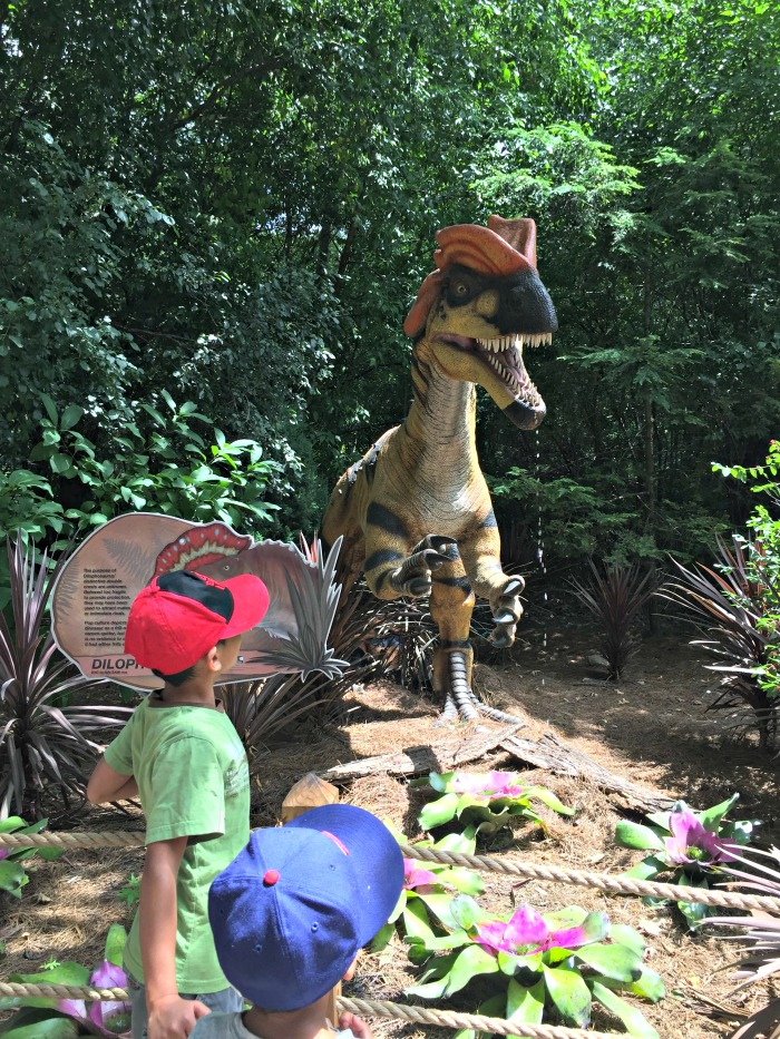 Dinosaurs Invade Milwaukee County Zoo