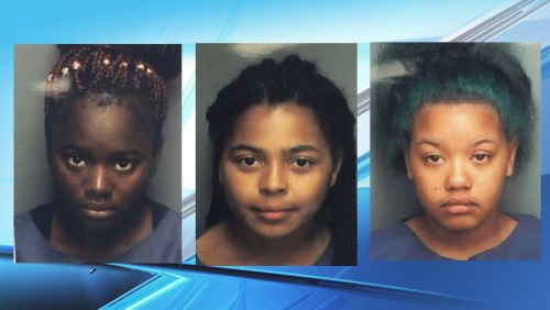 3 girls drowned florida