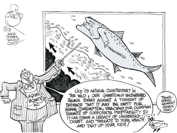 Fishy Genes, an OtherWords cartoon by Khalil Bendib