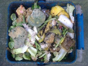Richardson-Junk Food-Nick Saltmarsh