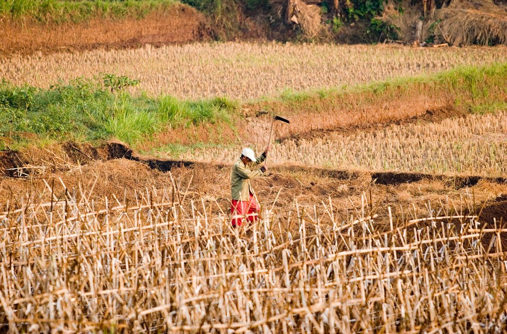 The Coming Crisis for the World's Farmers