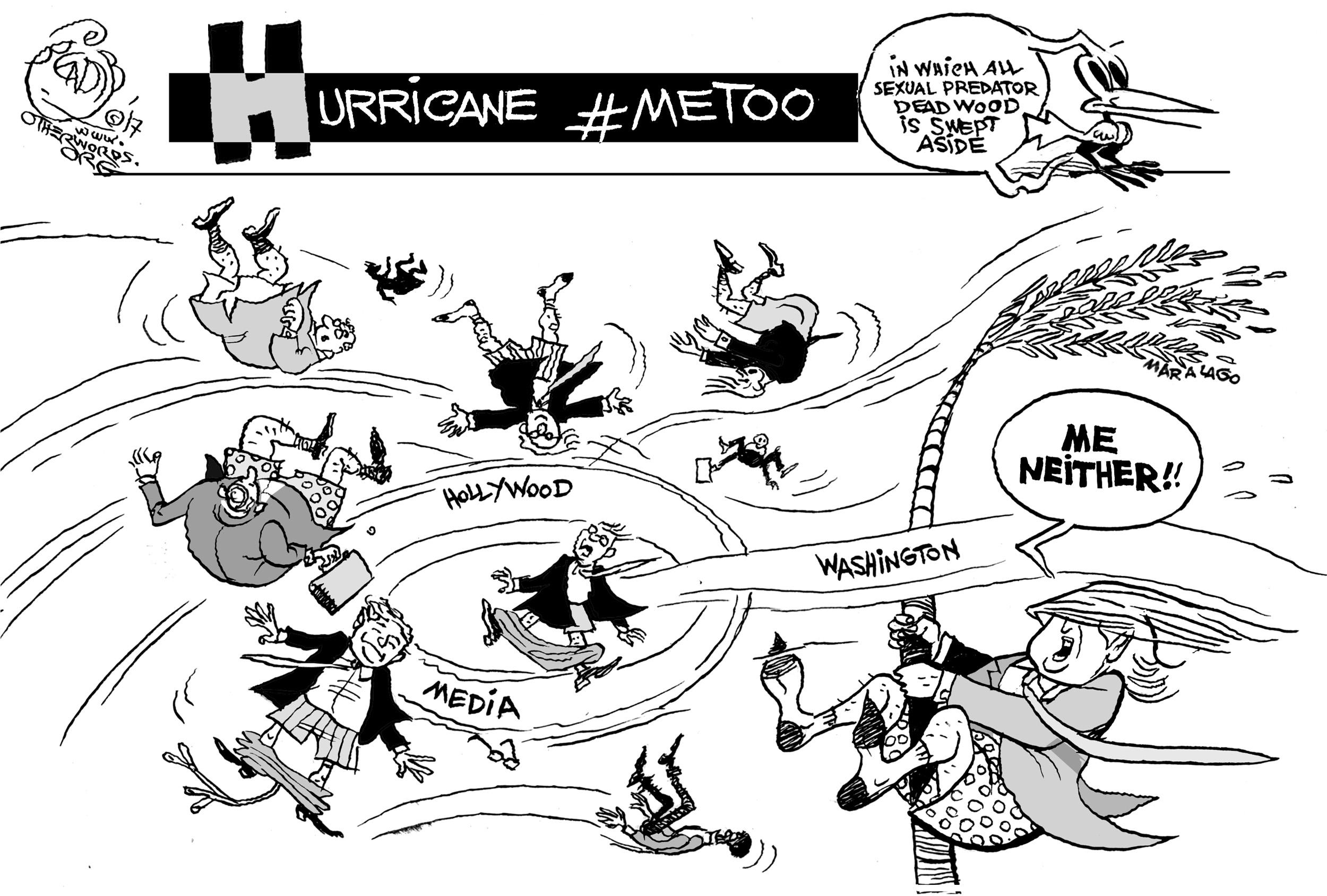 Hurricane Metoo