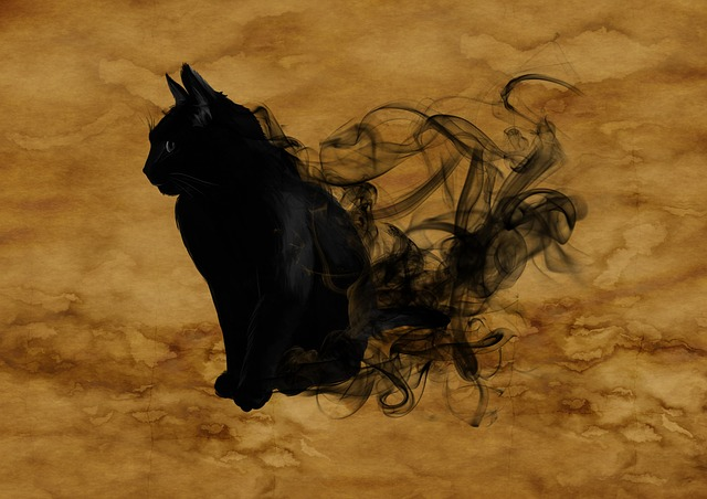 Black cats have been an animal sign for many years but depends on the culture whether it's good or bad.