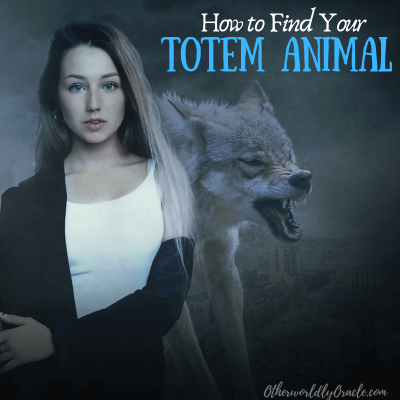 How to Find YOUR Totem Animal for Beginners