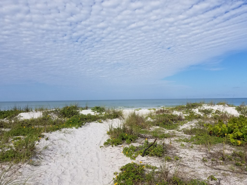 A great witchy spot, believe it or not, ,is Tampa Bay FL.