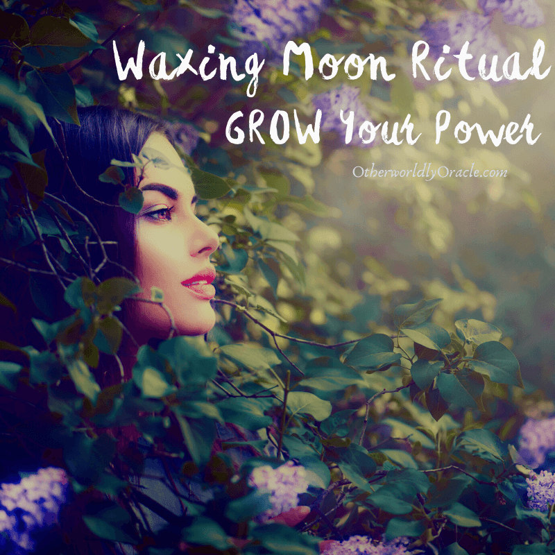 Waxing Moon: SIMPLE Grow Your Power Ritual for Members Only