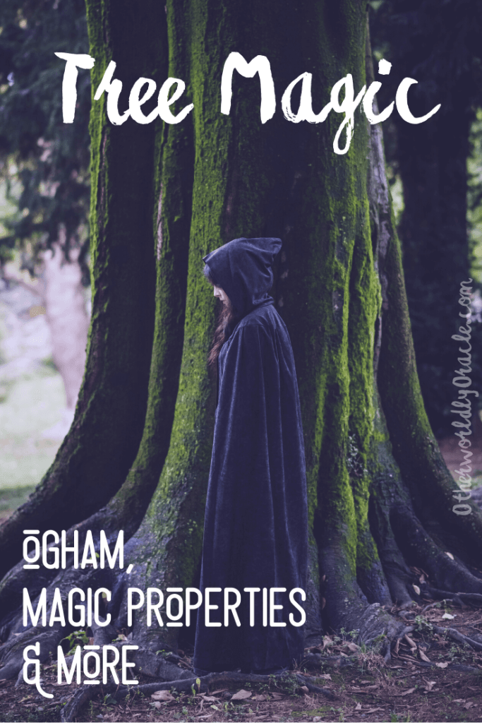 Tree Magic: Ogham, and Magic Properties of Common Trees