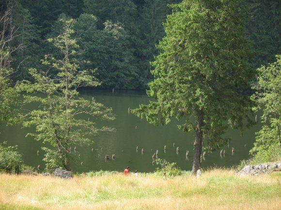 Lacu Rosu.