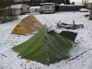 Vela im Schnee