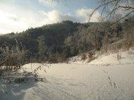 Eine Schneegarantie gibt es im ODenwald mitnichten, aber dieses Mal hat es dort richtig Spaß gemacht.