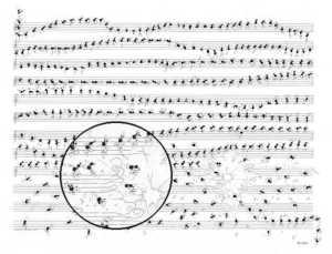El misterio de los músicos disléxicos