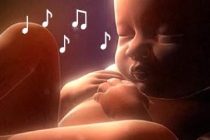 La música y el sonido en elbebé dentro del vientre.