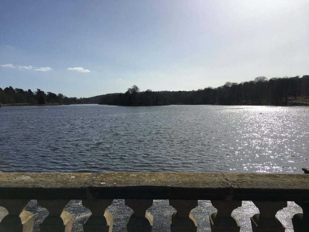 A day out in Staffordshire enjoying Trentham lake