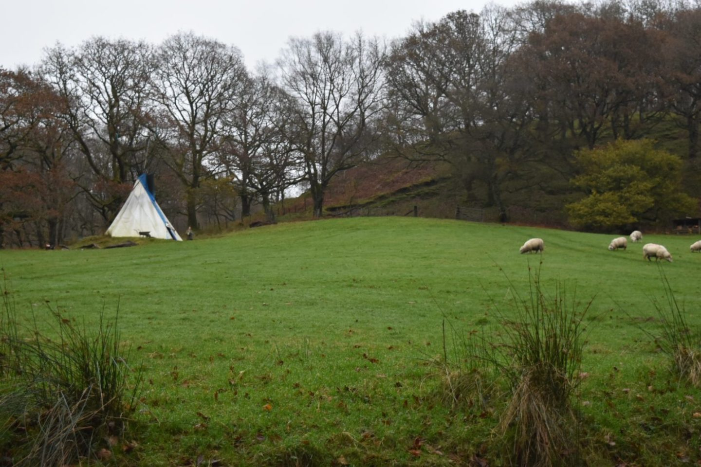 Glamping in Wales – A family glamping break at Eco Retreats
