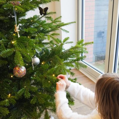The Christmas Forest Christmas Tree: Review