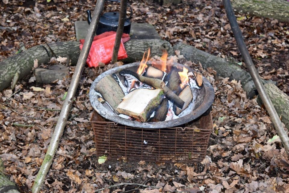 toasting marshmallows at a woodland birthday party for kids