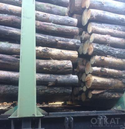 древесина1