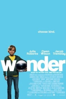 When Will 'Wonder' be on Hulu?