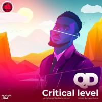 QD - Critical Level