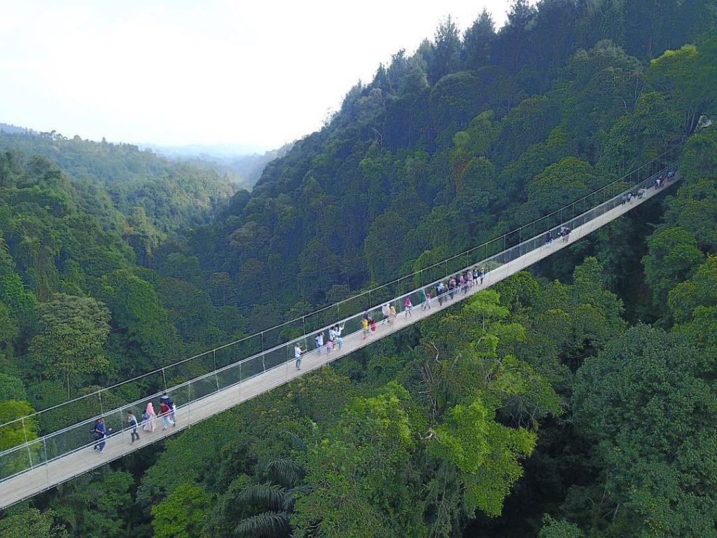 Fakta Jembatan Gantung Situ Gunung Di Sukabumi