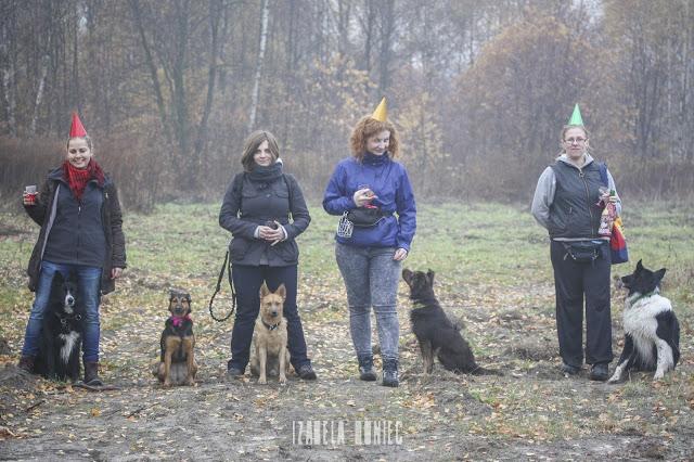 otojanka adopcinki adopciny impreza urodzinowa psie party