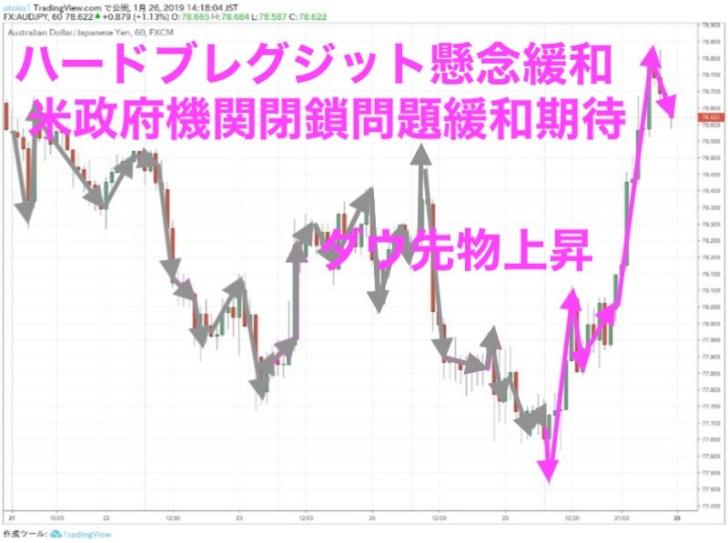 豪ドル円時間足(1月25日)