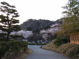 山寺が正面に見える:ヘナート・モタ&パトリシア・ロバート ジャパン・ツアーを観る