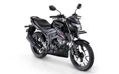 Suzuki-Bandit-Black