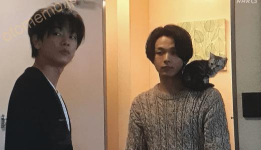 NHK連続テレビ小説『半分、青い。』中村倫也さん演じるまーくんこと「朝井正人」ロスが怖い