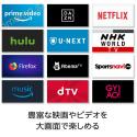 Hulu・dTV・NETFLIXだって簡単に見られる!