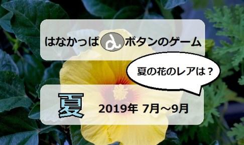 はなかっぱ2019夏