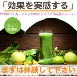 ネイチャーリズム 野菜&フルーツ酵素のドリンク