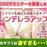 シンデレラアップ 東京美容外科監修の美BODYサプリ