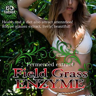 話題の野草酵素を購入できるページにリンクしている画像